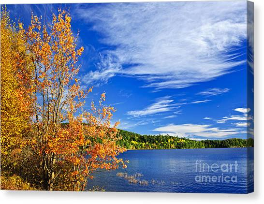 Cloud Forests Canvas Print - Fall Forest And Lake by Elena Elisseeva