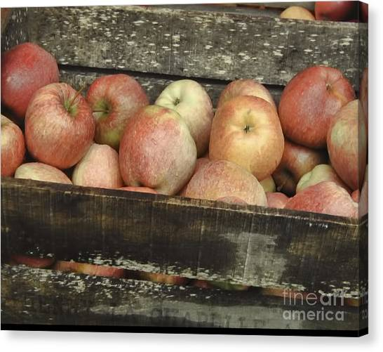 French Market Apples Canvas Print