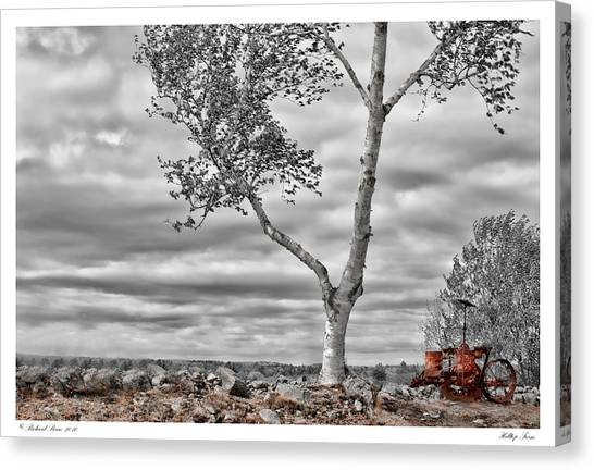 Hilltop Farm Canvas Print by Richard Bean