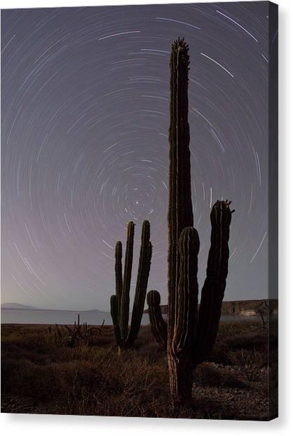 Isla Carmen, Sea Of Cortez, Baja, Mexico Canvas Print by Gary Luhm