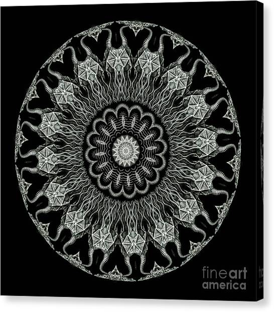Monochromatic Canvas Print - Kaleidoscope Ernst Haeckl Sea Life Series Black And White Set On by Amy Cicconi