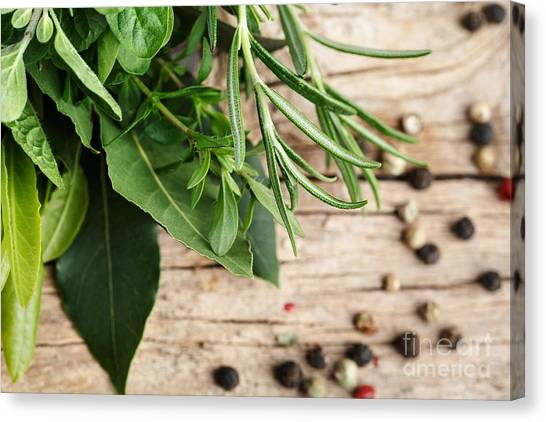 Presentations Canvas Print - Kitchen Herbs by Nailia Schwarz