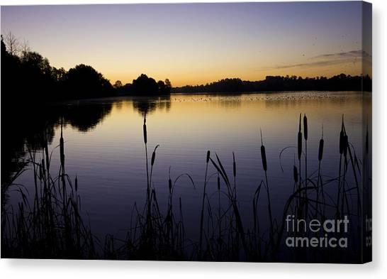 Lake Sunrise Canvas Print by Darren Burroughs
