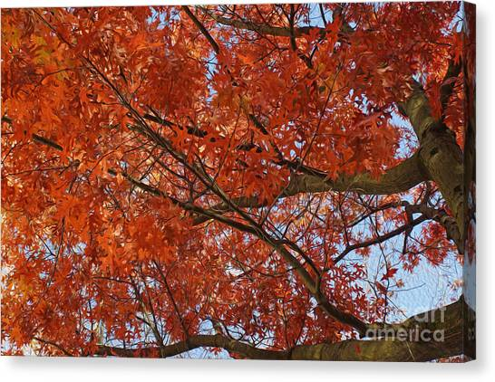 Leaves Canvas Print by Nur Roy