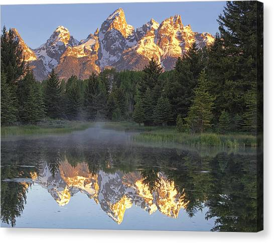 Wilderness Canvas Print - Morning Reflection by Andrew Soundarajan