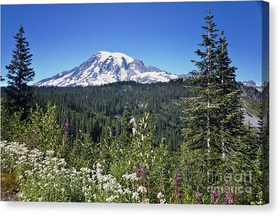 Mount Ranier Canvas Print