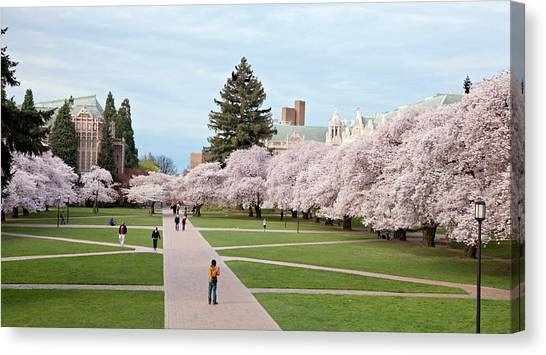University Of Washington Canvas Print - North America, Usa, Washington, Seattle by Charles Sleicher