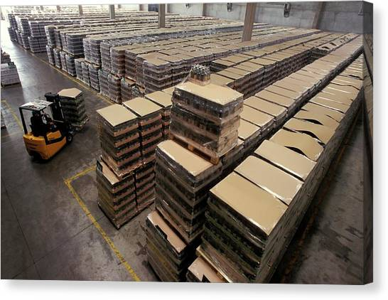 Forklifts Canvas Print - Olive Oil Production by Patrick Landmann/science Photo Library