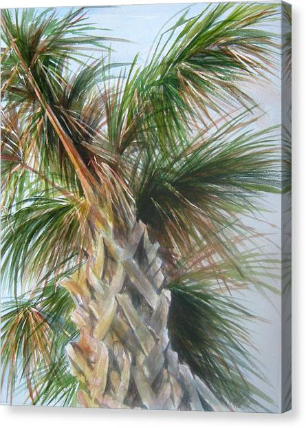 Palmetto 2011 Canvas Print