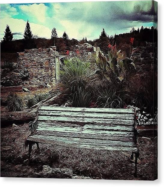 Rural Scenes Canvas Print - Quiet Contemplation by Natasha Marco