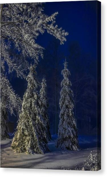 Rib Mountain State Park Snow Canvas Print