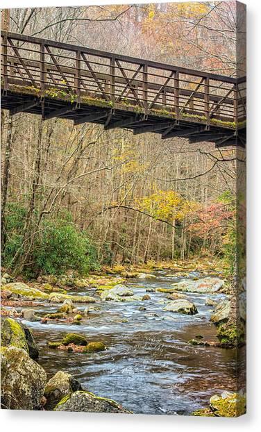 Smoky Mountain Stream 3 Canvas Print