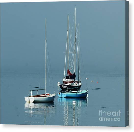 Sorrento Sailboats  Canvas Print