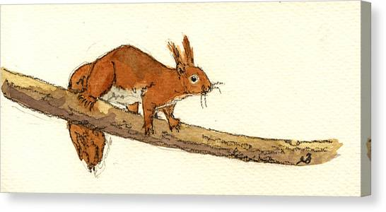Squirrels Canvas Print - Squirrel by Juan  Bosco