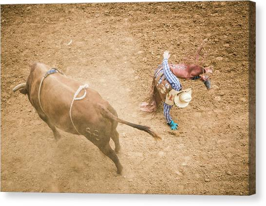 Bull Riding Canvas Print - Taos, New Mexico, Usa by Julien Mcroberts