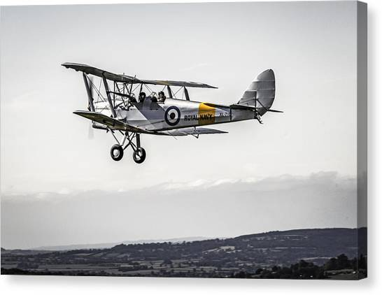 Tiger Moth Canvas Print