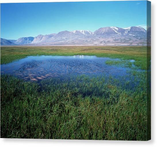Tundras Canvas Print - Tundra Pond by Simon Fraser/science Photo Library