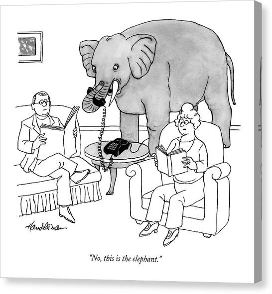 No, This Is The Elephant Canvas Print