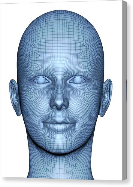 Biometrics Canvas Print - Wireframe Head by Alfred Pasieka