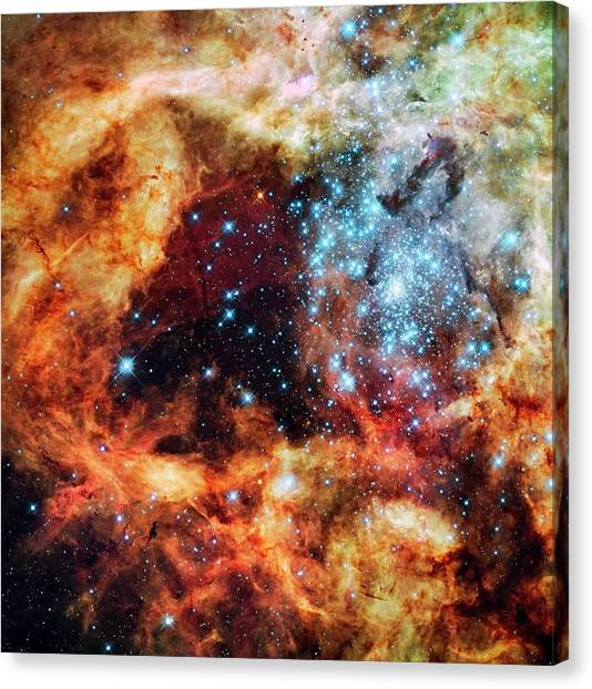 30 Doradus Star Clusters Canvas Print by Nasa/esa/stsci/e. Sabbi/science Photo Library