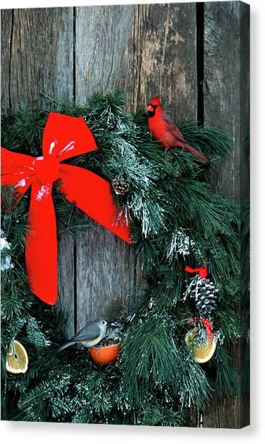 Titmice Canvas Print - Northern Cardinal (cardinalis Cardinalis by Richard and Susan Day