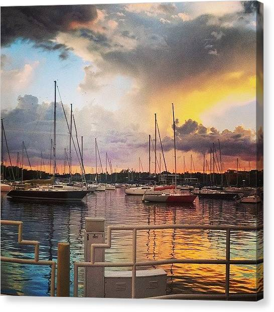 Grove Canvas Print - Coconut Grove At Sunset by Jillian  Lane