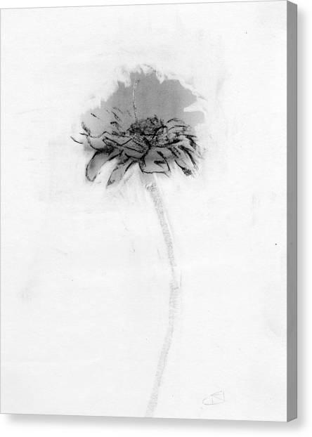 Glass Canvas Print - Rcnpaintings.com by Chris N Rohrbach