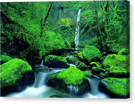 Nsa Canvas Print - Usa, Oregon, Columbia River Gorge by Jaynes Gallery