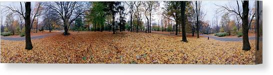 Fallen Leaf Canvas Print - 360 Degree View Of An Urban Park by Panoramic Images