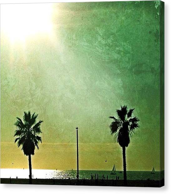 Santa Monica Canvas Print - Instagram Photo by Elena Tchoujtchenko