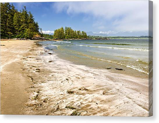 Vancouver Island Canvas Print - Coast Of Pacific Ocean On Vancouver Island by Elena Elisseeva