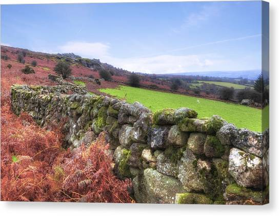 Moorland Canvas Print - Dartmoor by Joana Kruse