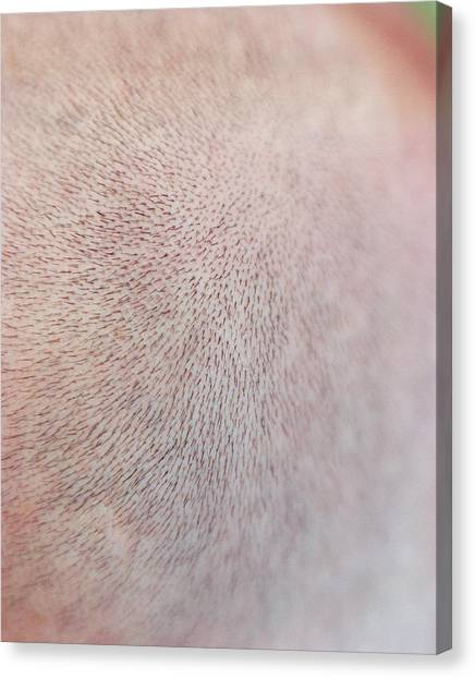 Chin Canvas Print - Facial Hair by Joti/science Photo Library