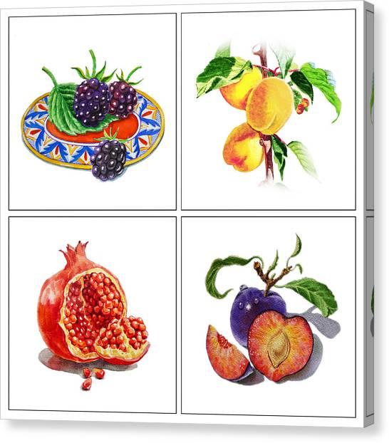 Blackberries Canvas Print - Farmers Market Delight  by Irina Sztukowski