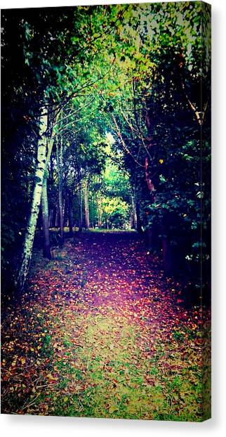 Forest Paths Canvas Print - Forest Path by Candy Floss Happy