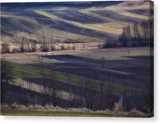 Landscape Canvas Print by Anna Gora