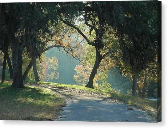 Morning Light Canvas Print by Robert Anschutz