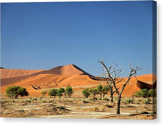 Southern Africa Canvas Print - Namibia, Sossusvlei by Kymri Wilt