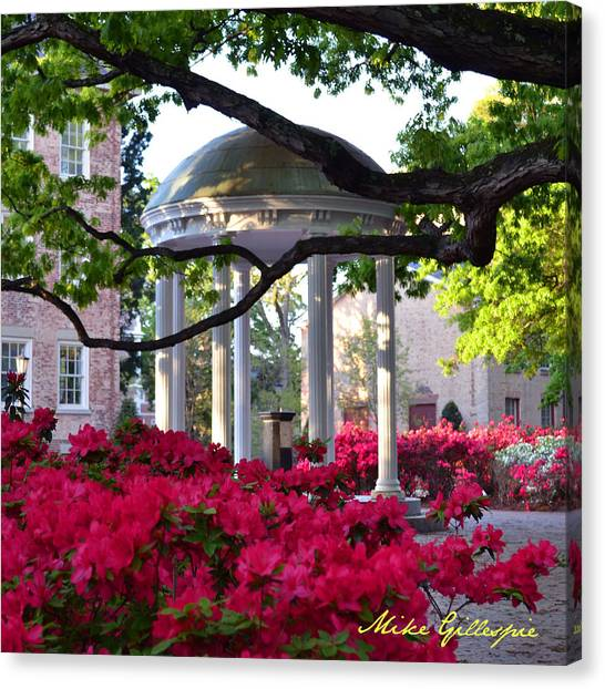 University Of North Carolina Chapel Hill Canvas Print - Old Well Azaleas by Michael Gillespie