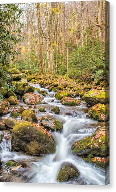 Smoky Mountain Stream 1 Canvas Print