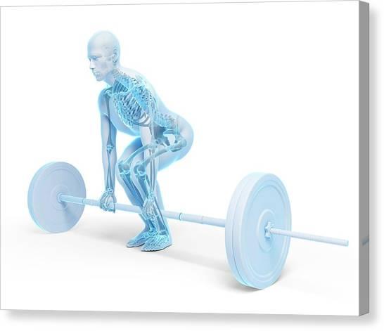 Weight Training Posture Canvas Print by Sebastian Kaulitzki
