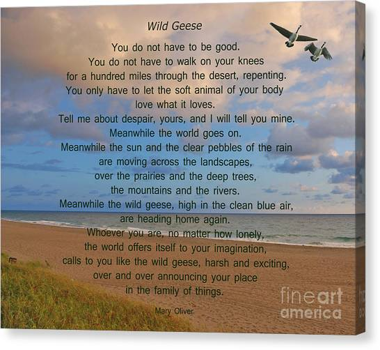 Mary Canvas Print - 40- Wild Geese Mary Oliver by Joseph Keane