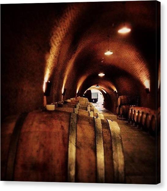 Wine Barrels Canvas Print - Barrels Of Wine by Danielle Godfrey