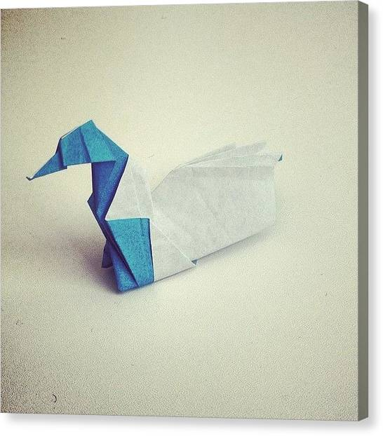 Loons Canvas Print - 46/365 - Paper Loon - Joseph Wu Folded by Ross Symons