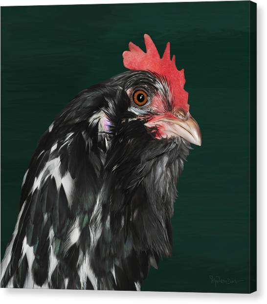 47. Bearded Hen Canvas Print