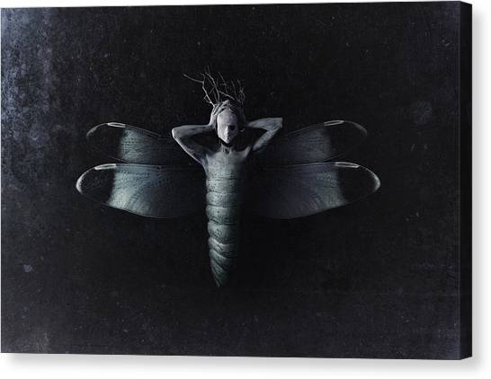 Emotional Canvas Print - The Moth by Victor Slepushkin