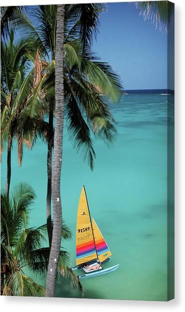 Catamarans Canvas Print - North America, Usa, Hawaii by Sunstar