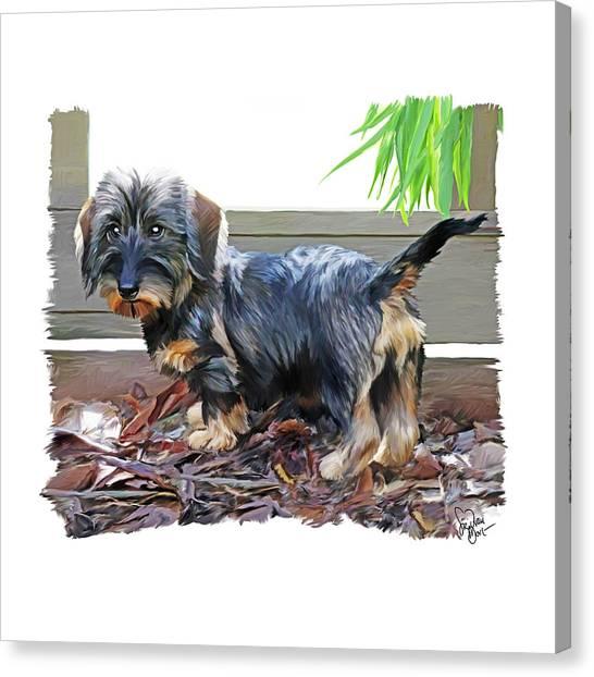 49. Pup Canvas Print