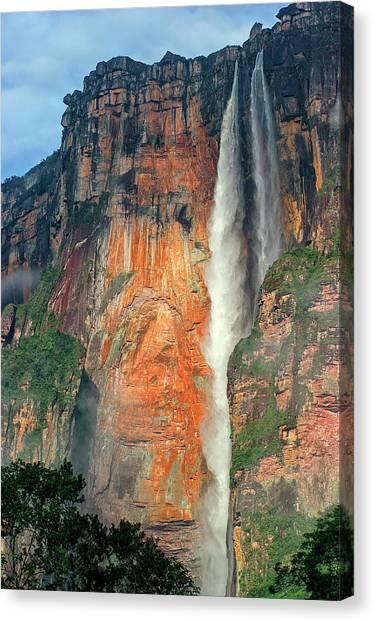 Angel Falls Canvas Print - Angel Falls Is The Highest Waterfall by David Santiago Garcia