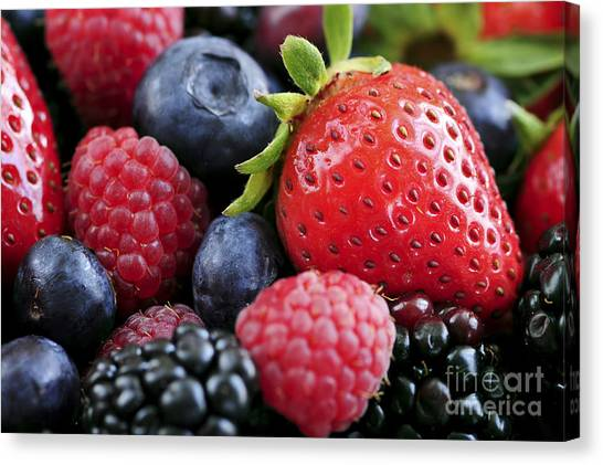 Raspberry Canvas Print - Assorted Fresh Berries by Elena Elisseeva